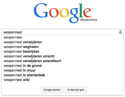 Google Suggesties